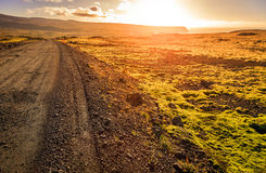 Road though Wesfjords Royalty Free Stock Images