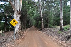 Road Through Forest In Western Australia With Sign Royalty Free Stock Images