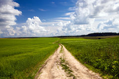 Road To A Field Stock Image