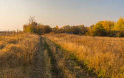 Road to abandoned hamlet in Sumskaya oblast, Ukraine Stock Photos