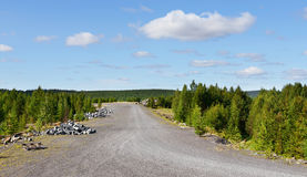 Road to an abandoned mine. Northern Finland stock photography