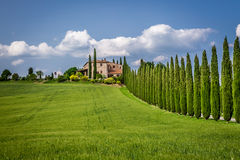 Road to agritourism in Tuscany between cypresses Stock Image