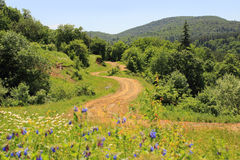 The road to Algeti National Park (Georgia) Royalty Free Stock Photos