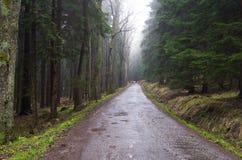 Road to Błędne Skały, Poland. Stołowe Mountains Park Narodowy in Poland Stock Photos