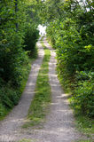 Road to the beach Royalty Free Stock Photography