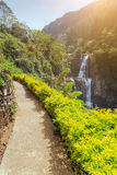 The road to the beautiful waterfalls Ramboda in sunny weather, t Royalty Free Stock Photos