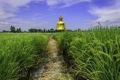 Road To Buddha Stock Image