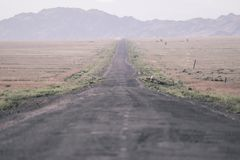 The road to the canyons. Canyon. stock photography