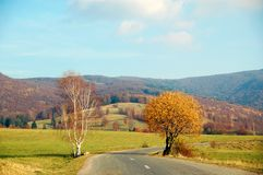 Road to Carpathians Royalty Free Stock Photography