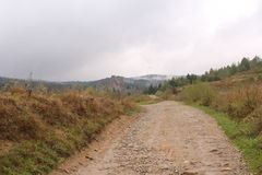 The road to the Carpathians in Tustan Royalty Free Stock Image