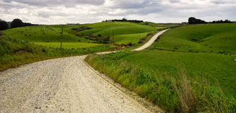 Road to Curio Bay New Zealand. Landscape on the road to Curio Bay New Zealand South island Royalty Free Stock Image