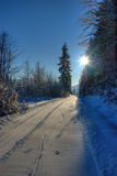 Road to the czech-polish border and to Orle. Photograph taken during a trip in the Jizera Mountains in the january 2009. Cross-country skiing is very popular in Royalty Free Stock Image