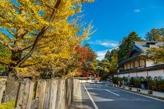 The Road to Danjo Garan Temple in Mt. Koya Area in Wakayama. Japan Royalty Free Stock Photo