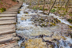 Road in to deep forest, Plitvice Stock Image