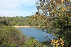Nature Beach Landscapes, Sydney Australia Stock Photos