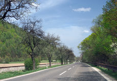 Road to Dolny Kubin in summer royalty free stock image