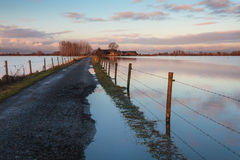 Road to a Dutch farm flooded by water. Driveway to a Dutch farm is flooded by water from the river IJssel in The Netherlands Stock Image