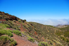 Road to El Teide volcano. Royalty Free Stock Images