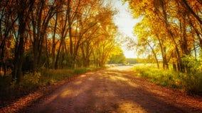 Road To Eternity Stock Photo