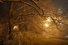The road to the evening winter Park shrouded in fog royalty free stock photography