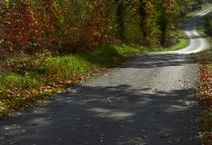 Road to fall 2 stock photo