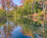Autumn Colors, Stony Creek Metropark, MI Stock Image