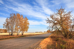 Road to the fields. Autumn landscape Royalty Free Stock Images