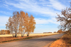 Road to the fields. Autumn landscape Stock Images