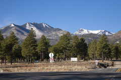 Road to Flagstaff,San Francisco Peaks,Coco Forest Stock Image