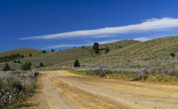 Road to the Flinders Ranges Royalty Free Stock Photos