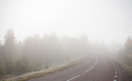 Road to Fog. Extreamly foggy road in Sweden Royalty Free Stock Photo