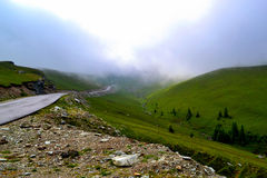 Road to fog in mountain Royalty Free Stock Photos