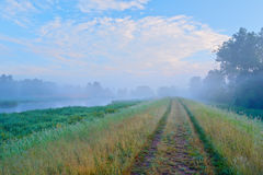 Road to the fog. Mysterious landscape. Royalty Free Stock Images