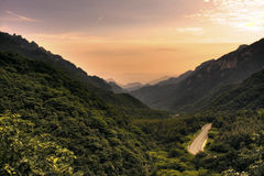 Road to forest. Down hill road to forest in Qin mountain in the sunset Stock Photography