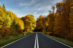 The road to the forest. In autumn Stock Photos