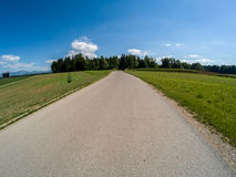 Road to the forest. Road to the green forest beautiful nature wide angle Stock Image