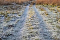 The road to the frosted grass. Frost on the road Stock Photo