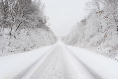 The Road to the Future. Snow covered country road in february Stock Images