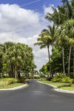 Traditional gated community road in Naples, Florida stock image