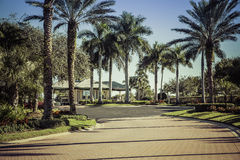 Road to gated community in Florida. Road to gated community in South Florida Royalty Free Stock Photo