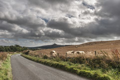 The Road To Glenrothes. Scottish landscape. Country lane with hay bales near Glenrothes in Scotland Stock Photography