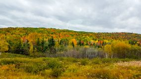 On the road, autumn colors, Tadoussac Quebec Stock Photos