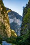 The road to the Gorge. Abkhazia. Georgia royalty free stock images