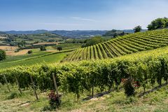 Free Road To Govone And San Martino Alfieri, Asti, In Monferrato Royalty Free Stock Photography - 128569307