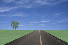 Road to grass land under bluesky Stock Images