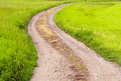 Road to a green field. Stock Image