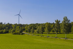The road to greener electricity. A small gravel road paved by birches and green fields is showing the way to a greener living with the use of wind power Stock Photos
