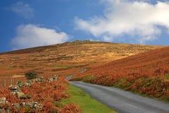 Hameldown, Dartmoor Stock Image