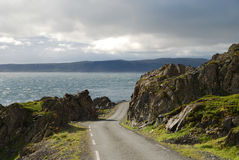 Road to Hamningberg in summer. Stock Photography
