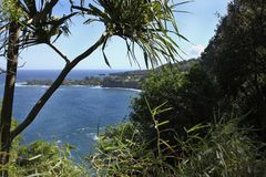 Road to Hana Royalty Free Stock Image